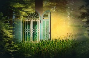 windowToForest